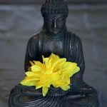 Meditacion-buda