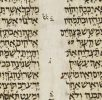 Codex-Alepo